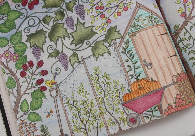 flores jardim secreto:jardim-secreto-floresta-encantada-11