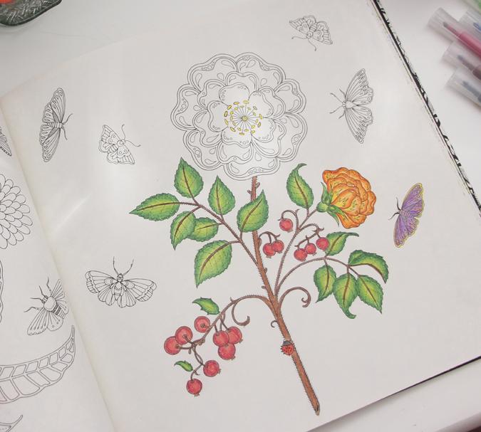 jardim-secreto-floresta-encantada-4